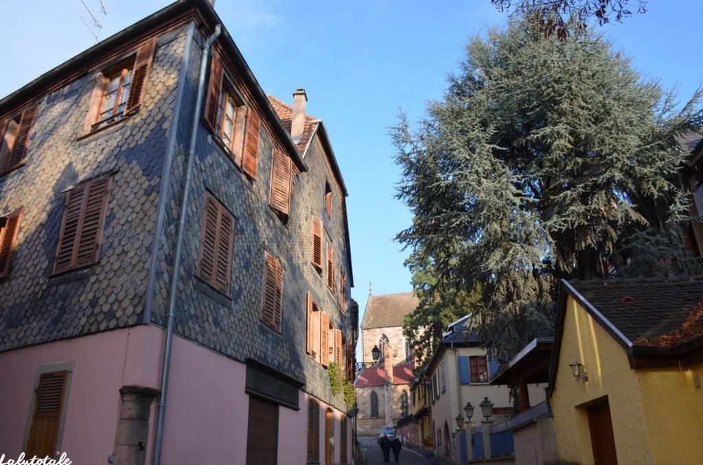 Alsace Ribeauvillé Thannenkirch vin Noël