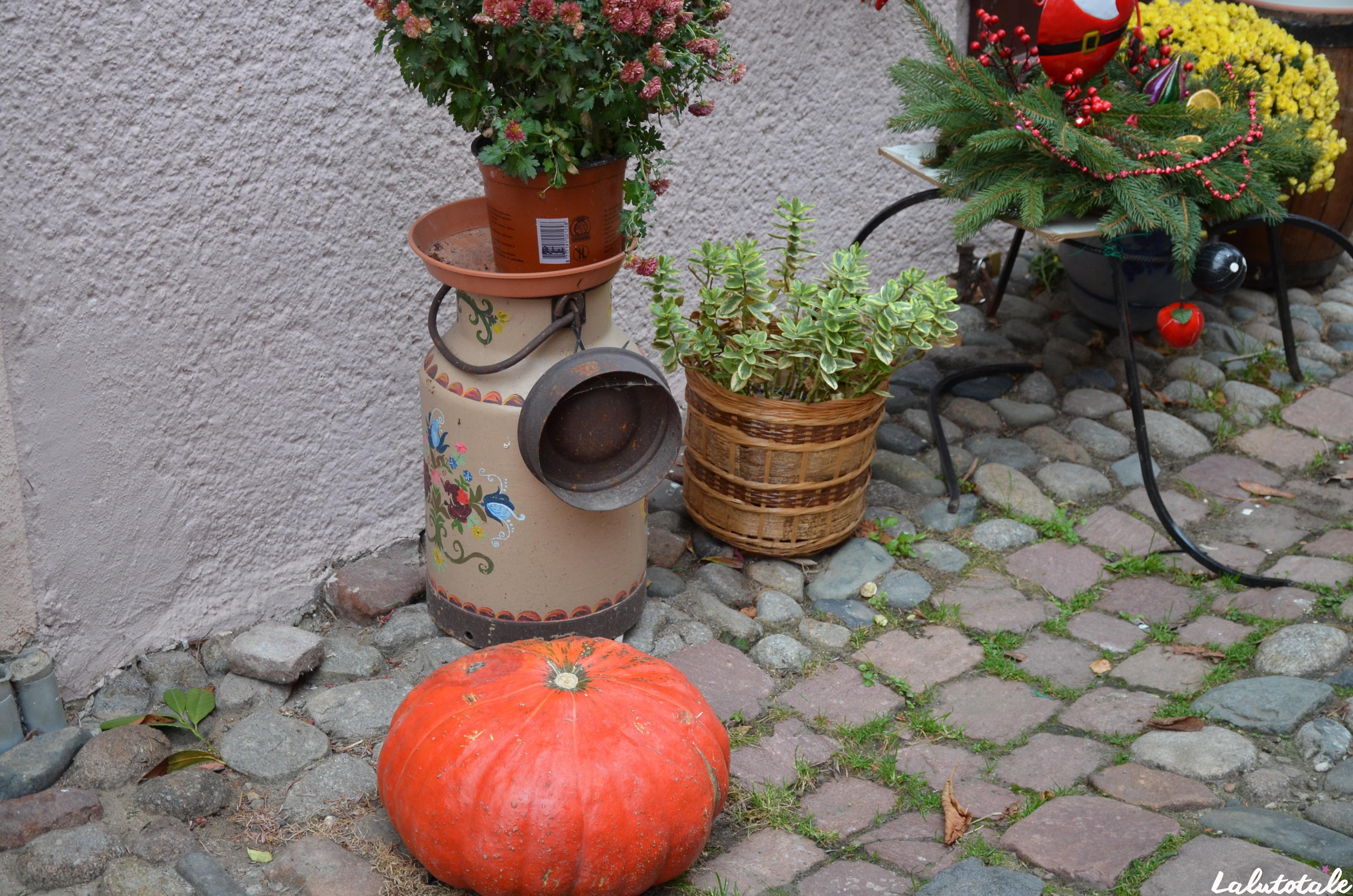 ( L'Alsace en décembre – Jour 1 ) Les marchés de Noël d'Eguisheim et Kaysersberg