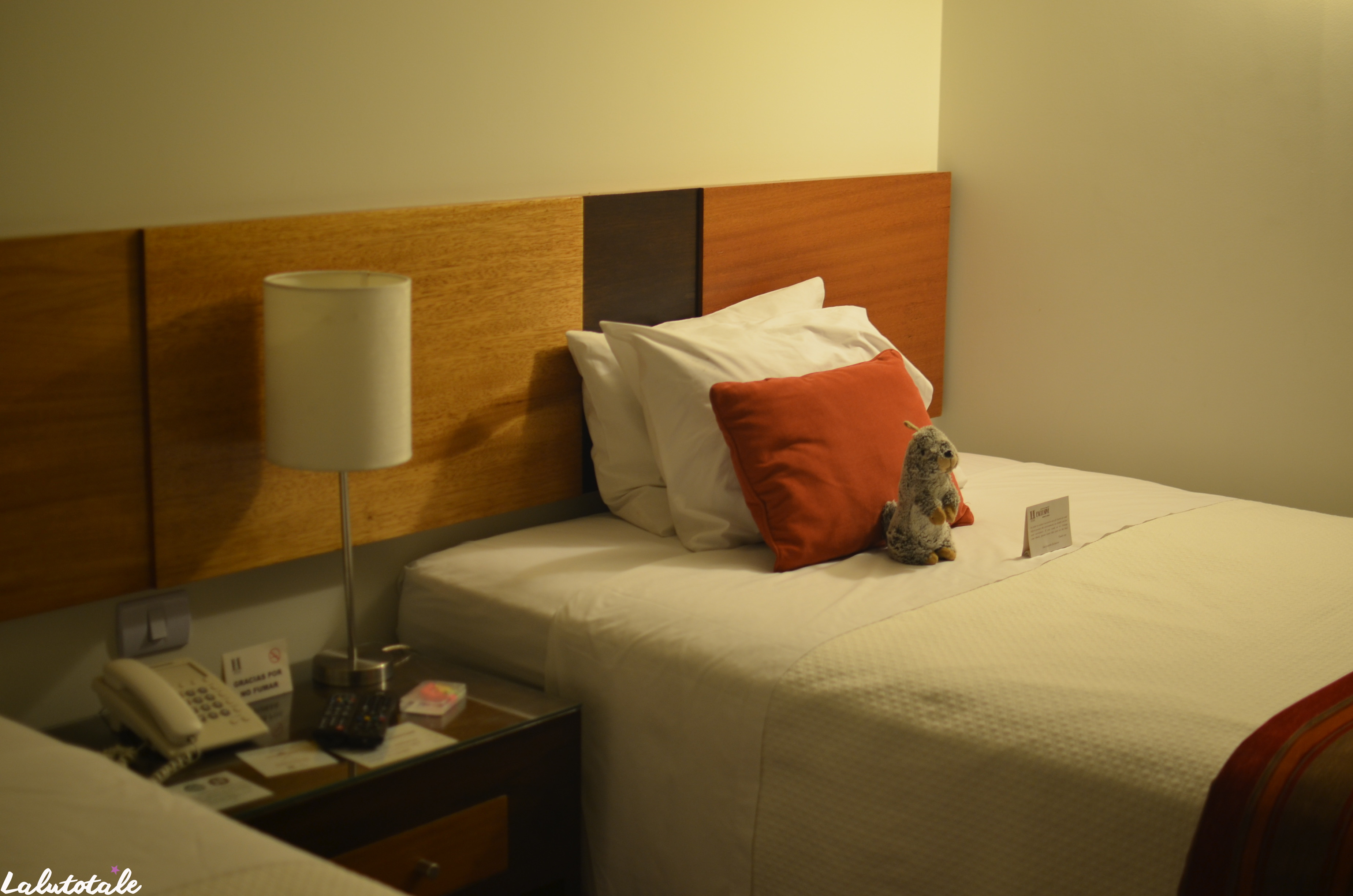 ( PÉROU Jour 1 ) Doudou Marmotte, Lima, valise pétée et semi-coma.