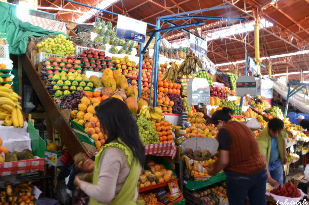 Pérou Arequipa circuit tourisme marché pisco Typika picanteria
